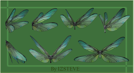 Dragonfly Wings Set 01 by IZSTEVE