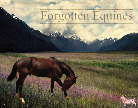 Forgotten Equines by crossfold