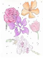 flowers by TheHiddenTalents