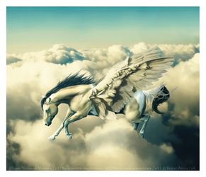 UP IN THE AIR by Static-Wings