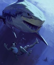 Shark by George-Eracleous