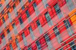 Urban Colors by Catlaxy