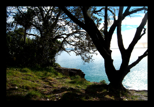 Noosa - Ocean Cliff by ciara-cable