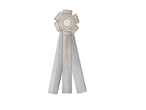3rd place ribbon RDHS dressage cup by KimenLie
