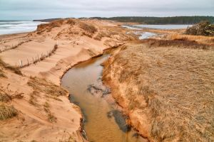 PEI National Park - Cavendish Beach Stream by somadjinn
