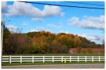 Country Autumn by nighthawk663