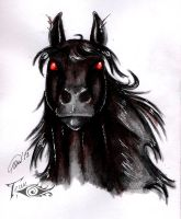 shadow mane by Laterne-Magica