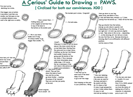 Paw Drawing tut. by CeriousArt