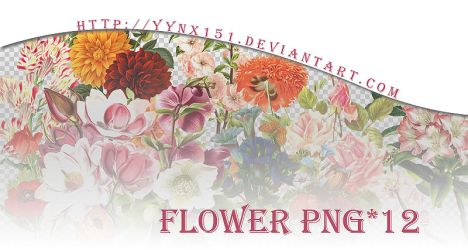 Flower png pack #06 by yynx151