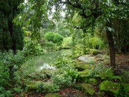 252 - garden by WolfC-Stock