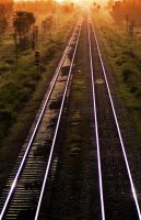 Train Tracks in India by y-me