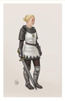 Paladin by Bergholtz