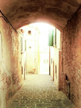 Tuscan Alley 1 by cattycass
