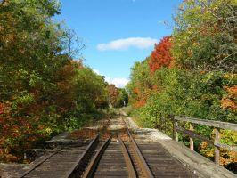 Down the Tracks in Autumn by Michies-Photographyy