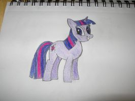 The Twilight Sparkle Project Complete! by michaelajunker