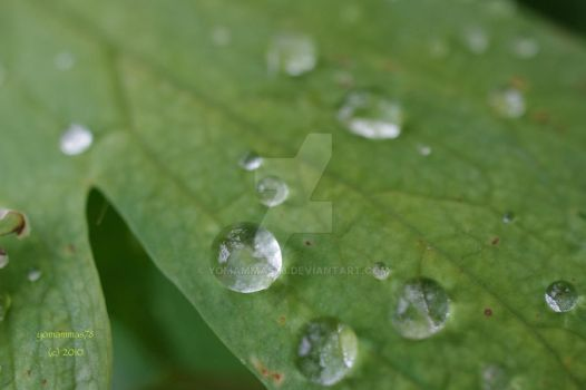 droplets by yomammas78