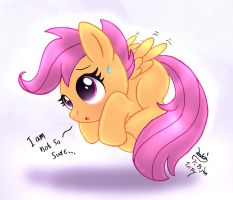 MLP FIM - Scootaloo Try To Fly by Joakaha