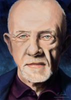 Mike Ehrmantraut by martianpictures