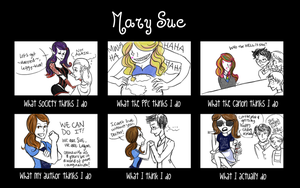 Mary Sue Meme by LilyWinterwood