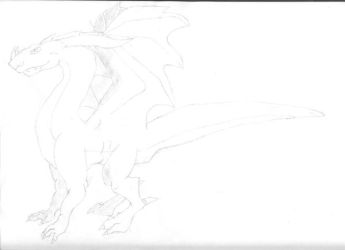practice drawing  dragon by Dragons-white