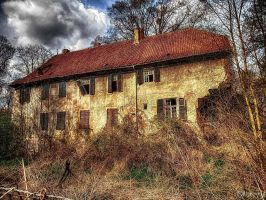 Decay III by Weissglut
