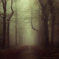 Deeper shade of Soul by Oer-Wout