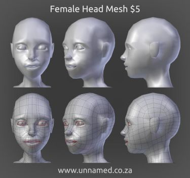 Female Head Model by YeshuaNel