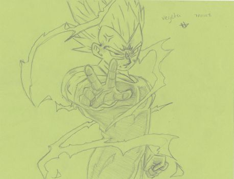 Vegeta by Nellybelly145