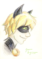 2018.06.09 Chat Noir by CaptainPharos