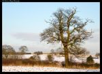 WINTER FIELDS (DERBYSHIRE) by Chattering-Magpie