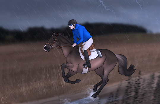 Endurance - Comp entry by FeatherCandy