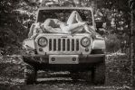 It's a Jeep thing... by RobertSleeper