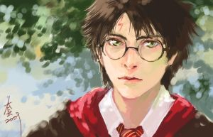 sketch  harry potter by woshibbdou