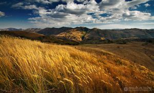 Autumn colors in Apuseni Mountains 15 by adypetrisor