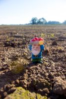 Farm Gnome by thedustyphoenix