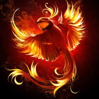 Fire bird by ElenaDudina