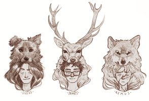 Padfoot, Prongs, Moony by Aemyle