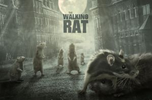The Walking Rat by lenyca