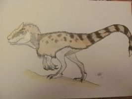 Southern allosaurus... Or not? by Kazuma27