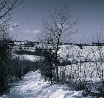 Path in the snow II by VesnaRa-14
