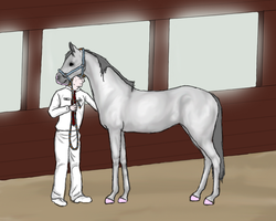 Inspection by Icetaon