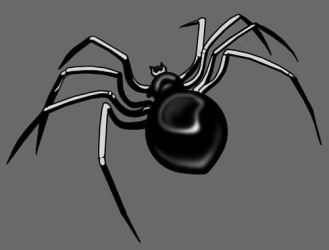 a spider by AlraM