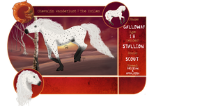 CW | Galloway | Exile Herd Application by DinoGalaxy