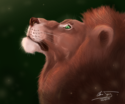 Scar by ClaireJouy