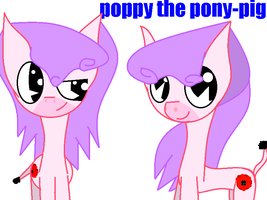 Poppy The Pony-pig by theshadowpony357