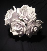 Paper Roses with Alice Text by artaddict