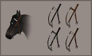 .: Traaker bridle 1 :. by Pashiino