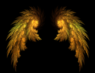 Angel Wings by Tigoth