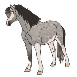 Horse Adopt 294 - Sold by Miss-Adopts