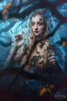 FAIRY QUEEN OF MOTH by LilifIlane